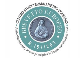 The research of the Pietro D'Abano Thermal Studies Center continues
