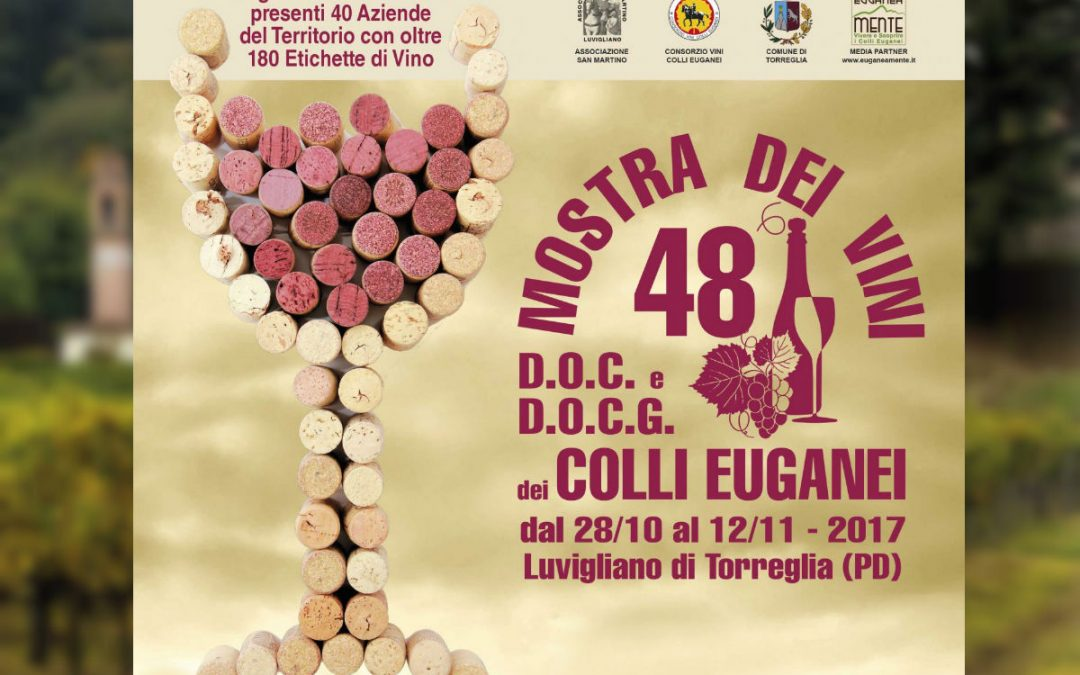 Saint Martin's Day among the DOC wines of the Euganean Hills